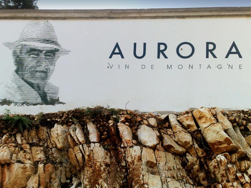 Aurora-boutros- fresque